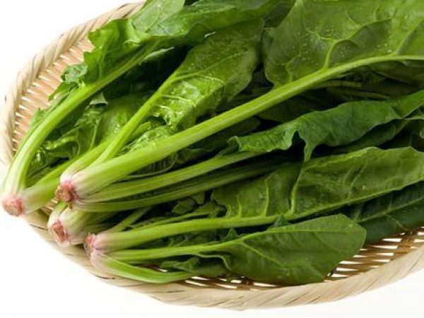 Spinach Extract 4:1 TLC