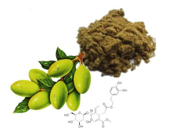 Olive Leaf Extract 20% Hydroxytyrosol HPLC
