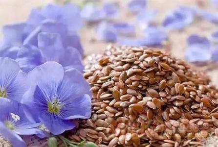 Flaxseed Extract 10:1 TLC