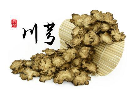 Rhizoma Chuanxiong Extract 10:1 TLC (Osha Root Extract)