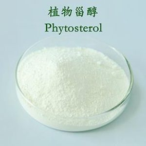 Phytosterol Extract Total Sterol 95% with 40% Beta-sitosterol