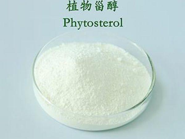 Phytosterol Granule 90% Total Sterol GC