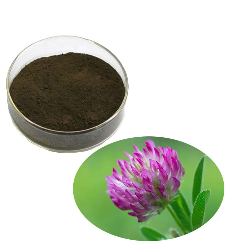 Red Clover Extract Isoflavones 8% HPLC