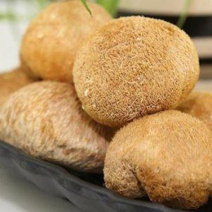 Lion's Mane Mushroom Extract 50% Polysaccharide UV