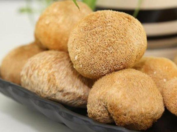 Lion's Mane Mushroom Extract 30% Polysaccharide UV