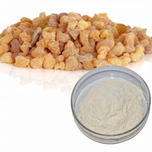 Boswellia Extract Boswellic acid 65% Titration