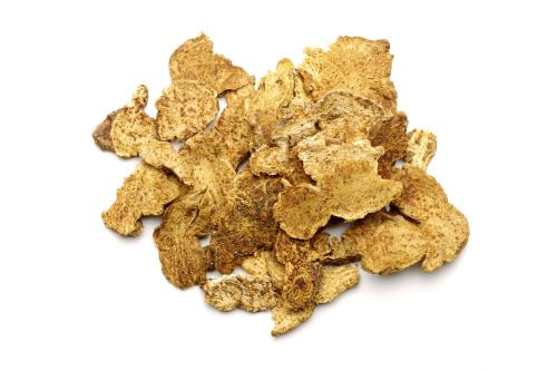 Atractylodes Extract 12:1 TLC (Chinese Atractylodes Extract)