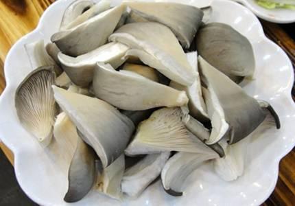 Oyster Mushroom Extract Polysaccharides 30% UV