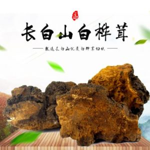 Chaga Mushroom Extract Polysaccharide 30% UV