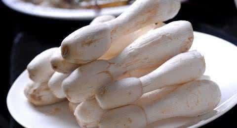Chicken Leg Mushroom Extract Polysaccharides 30% UV