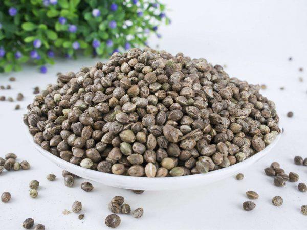 Organic Hemp Seed Protein 50% Powder (Organic Hemp Protein Powder 50%)