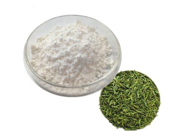 Green Tea Extract Caffeine 98% HPLC (natural)