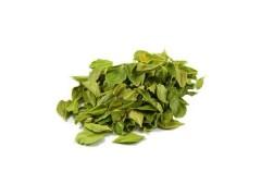 Buchu Leaves Extract 4:1 TLC