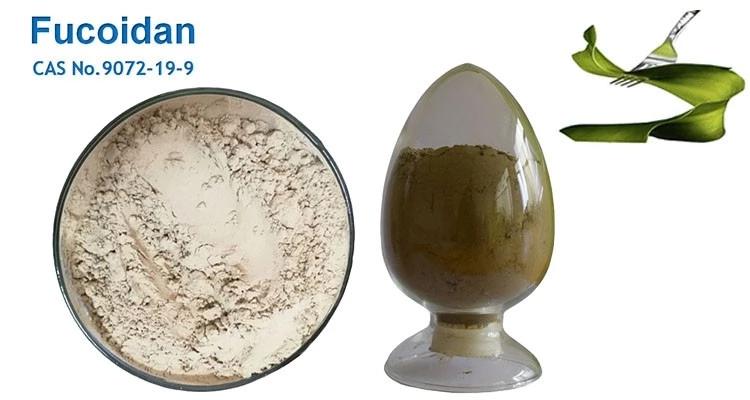 Fucoidan 85% UV (Laminaria Japonica)