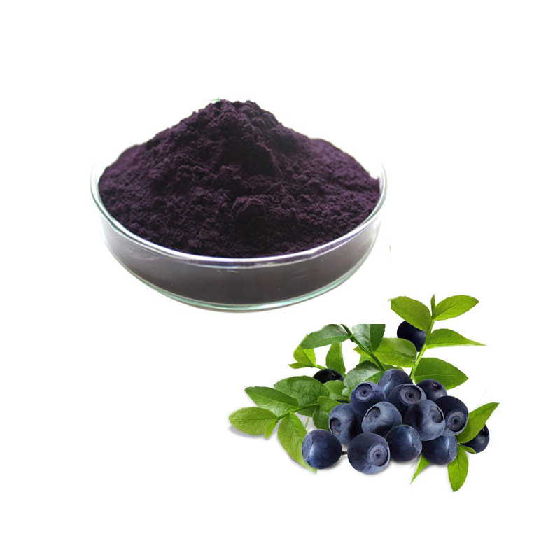 European Bilberry Extract Anthocyanidins 25% UV (36% Anthocyanosides HPLC)