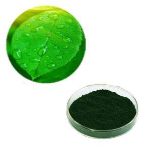 Sodium Copper Chlorophyllin 90% USP