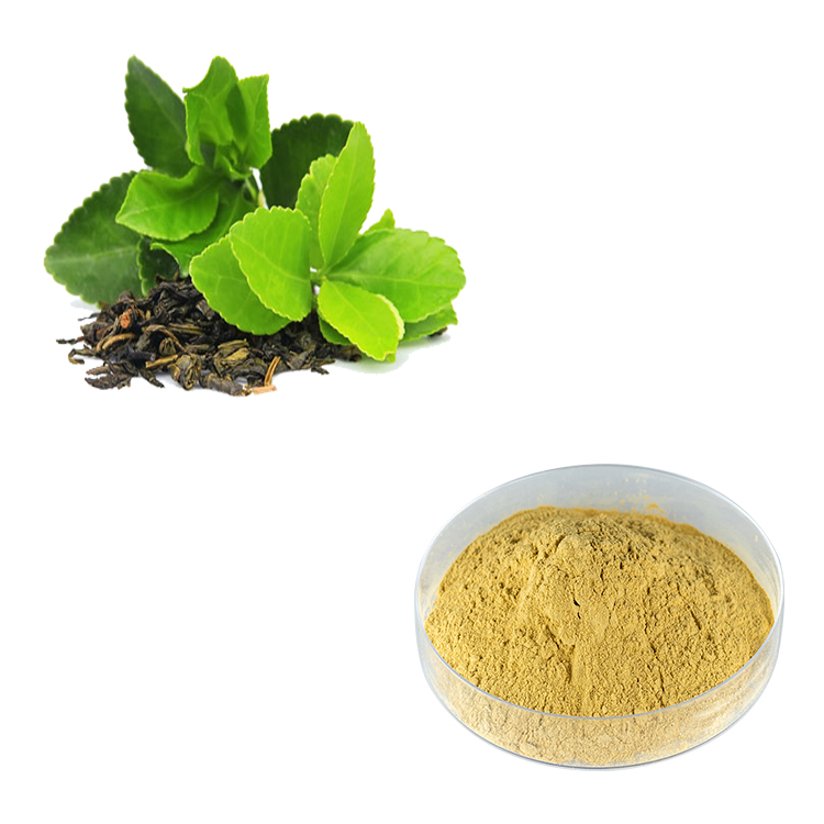 Green Tea Extract Polyphenols 98% UV (EGCG 50% HPLC, Caffeine<0.5%)