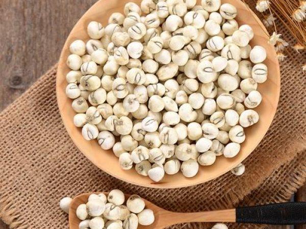 Zhejiang Fritillary Bulb Powder (Zhe Bei Mu)