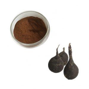 Black Radish Extract 4:1 TLC