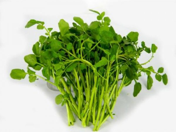 Watercress Powder