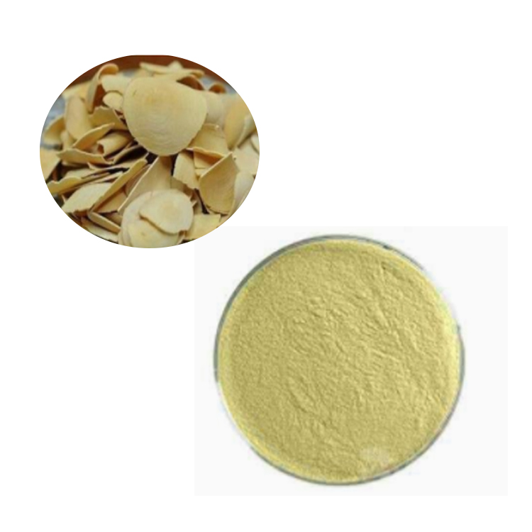Tongkat Ali Root Extract 100:1 TLC (Eurycoma Longifolia Jack Extract 100:1 TLC)