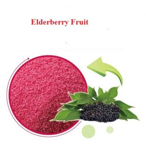 Elderberry Fruit Extract Anthocyanidins 13% UV (50:1)