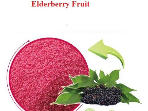 Elderberry Fruit Extract Anthocyanidins 13% UV (50:1)