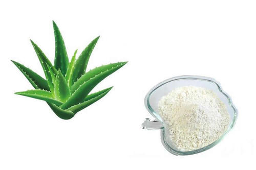 Aloe Vera Gel Freeze Dried Powder 100:1 TLC