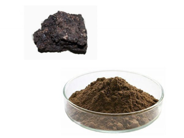 Shilajit Extract Powder 50% Fulvic Acid