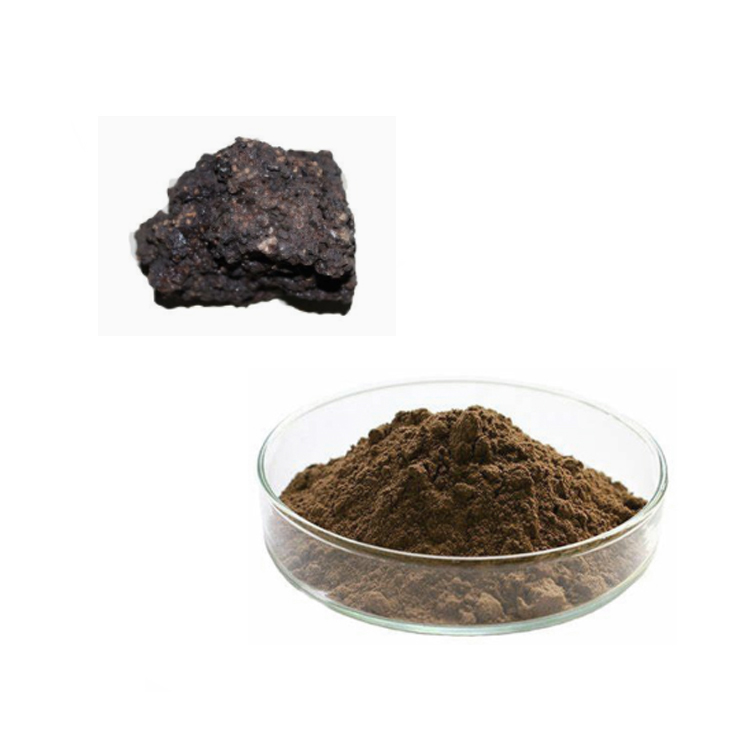 Shilajit Extract Powder 20% Fulvic Acid
