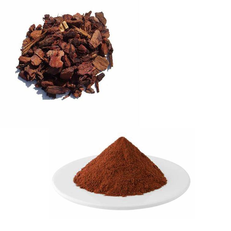 Pine Bark Extract Proanthocyanidins 95% UV