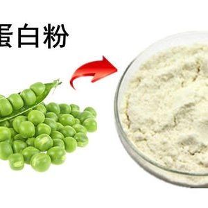 Pea Protein Powder (Non-GMO)