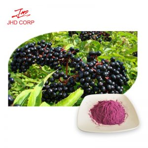 Elderberry Fruit Extract 4:1 TLC