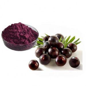 Acai Berry Extract 10:1 TLC