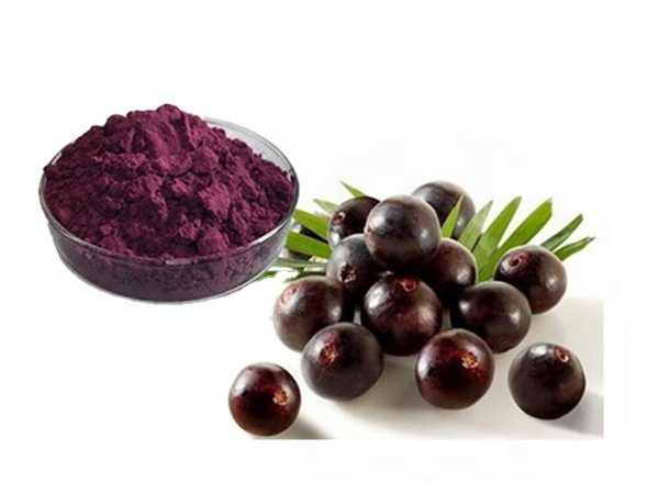 Acai Berry Extract 4:1 TLC