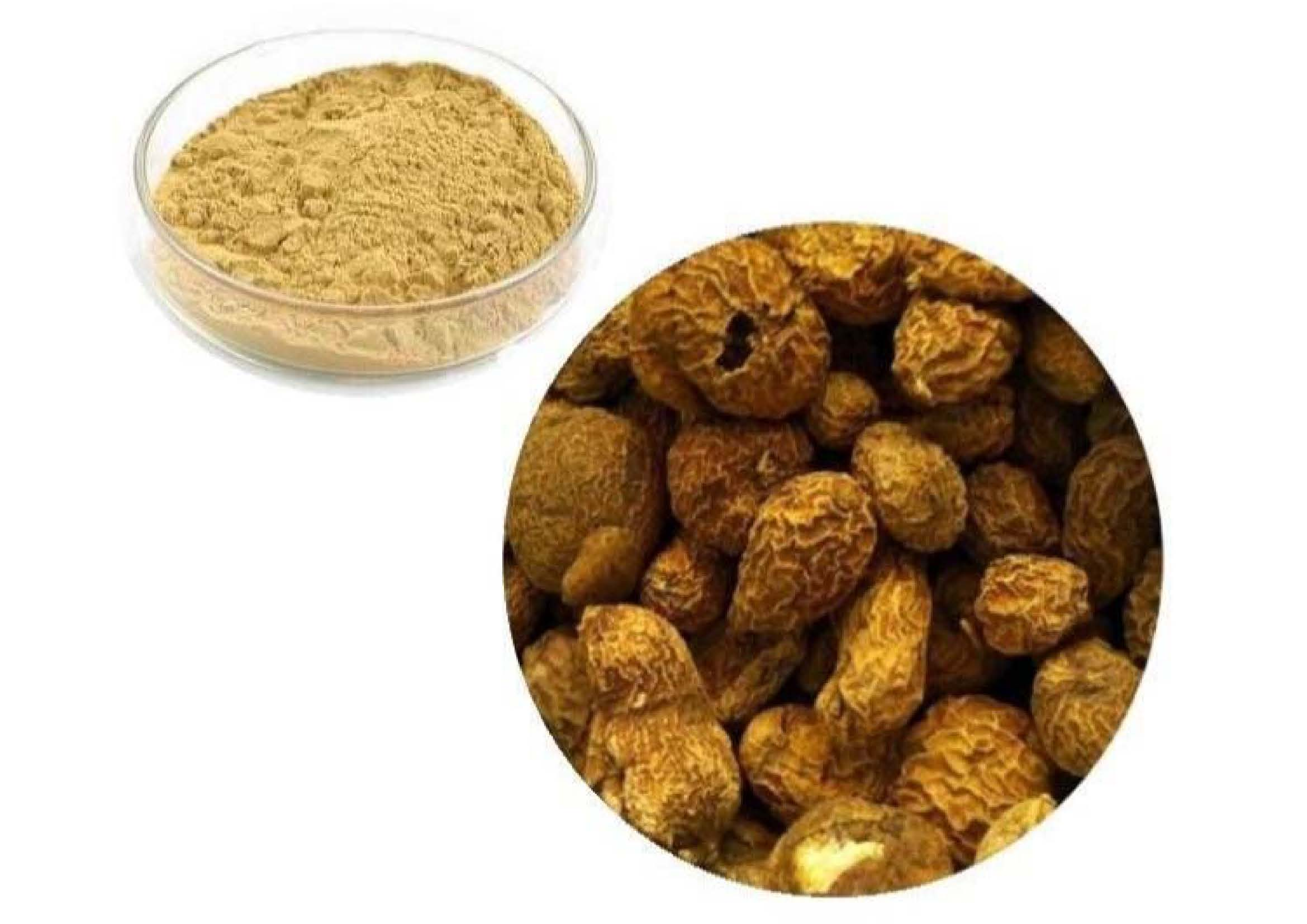 Guduchi Extract 5% Bitter Gravimetric (Tinospora Cordifolia) ( Indian Tinospora)