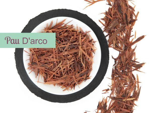 Pau D'Arco Bark Extract 4:1 TLC (Brazil)