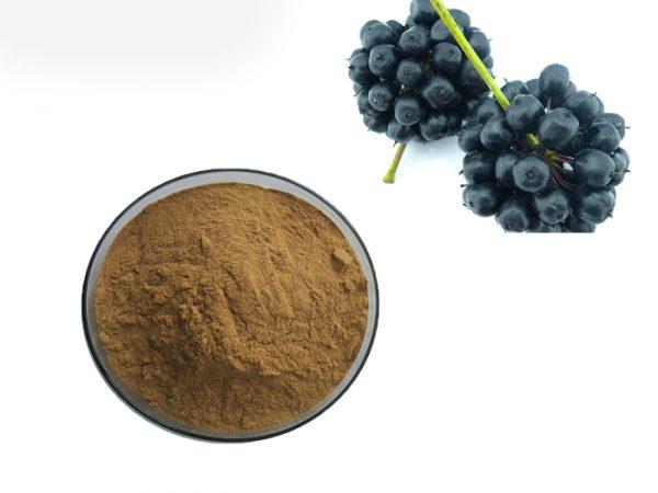 Eleuthero Root Powder (Siberian Ginseng Powder)