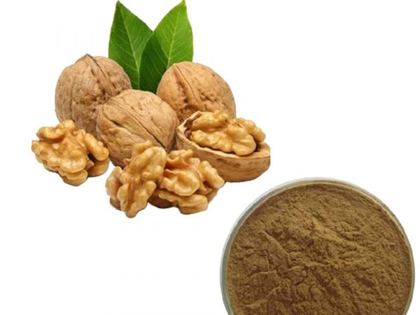 English Walnut Powder (Juglans regia Powder)