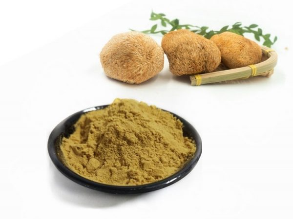 Lion's Mane Mushroom Extract 15% Beta Glucan