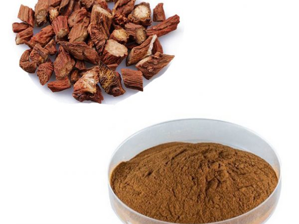 Salvia Miltiorrhiza Extract 4:1 TLC (Red Sage Root Extract)