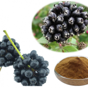 Eleuthero Extract 4:1 TLC (Siberian Ginseng Extract 4:1 TLC)