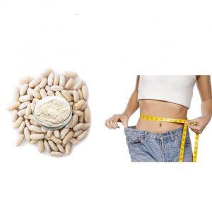 White Kidney Bean Extract 4:1 TLC