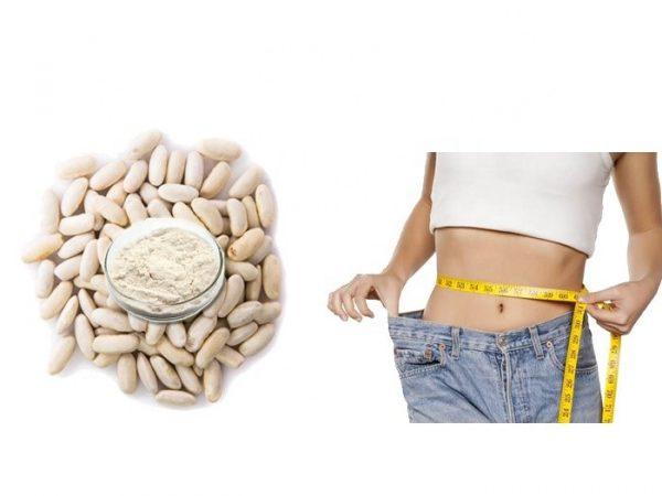 White Kidney Bean Extract 10:1 TLC