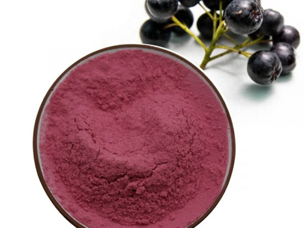 Aronia Chokeberry Extract Anthocyanidins 1.5% UV