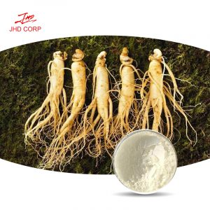 Panax Ginseng Extract Ginsenosides 10% HPLC (Root)