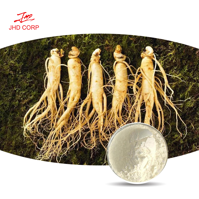 Red Ginseng Root Extract Ginsenosides 1% HPLC