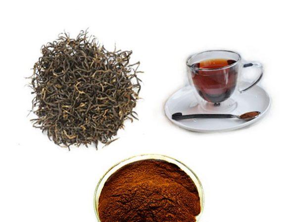 Instant Black Tea Extract 20% Polyphenols (4% Caffeine)